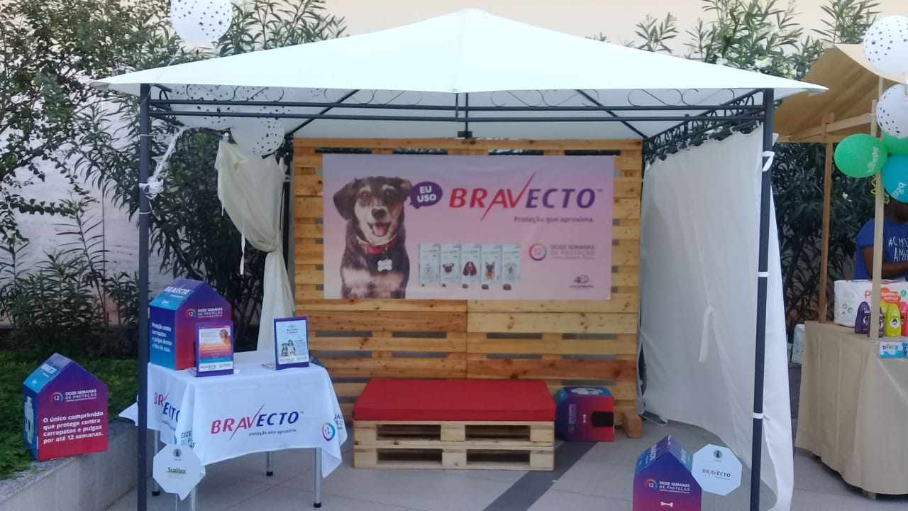 MSD PET STAR – BRAVECTO – DOG WEEKEND
